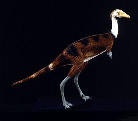 Κόκαλα δεινοσαύρων που χρονολογούνται